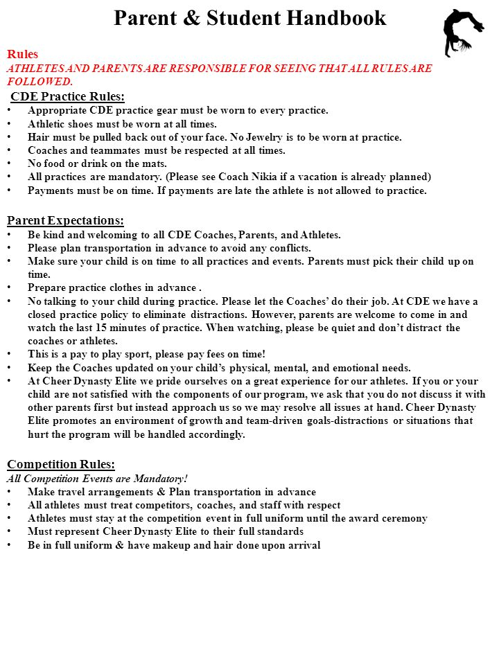Parent & Student Handbook What is a typical season like at Cheer Dynasty Elite.