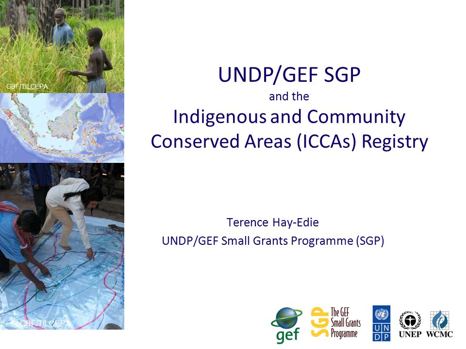 SGP background  Total GEF investment in SGP since 1992 pilot phase over $600 million  SGP provides direct access for national NGOs and CBOs, and indigenous peoples up to $50,000  Projects approved by a National Steering Committee with a non-governmental majority (incl.