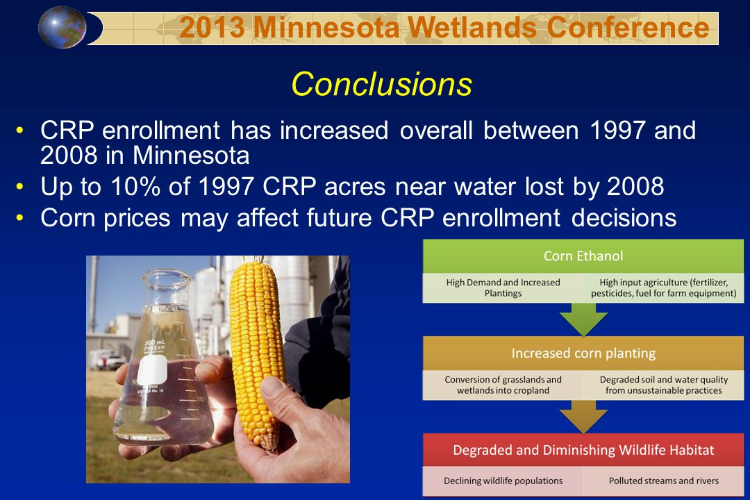 Conclusions CRP enrollment has increased overall between 1997 and 2008 in Minnesota Up to 10% of 1997 CRP acres near water lost by 2008 Corn prices may affect future CRP enrollment decisions 2013 Minnesota Wetlands Conference