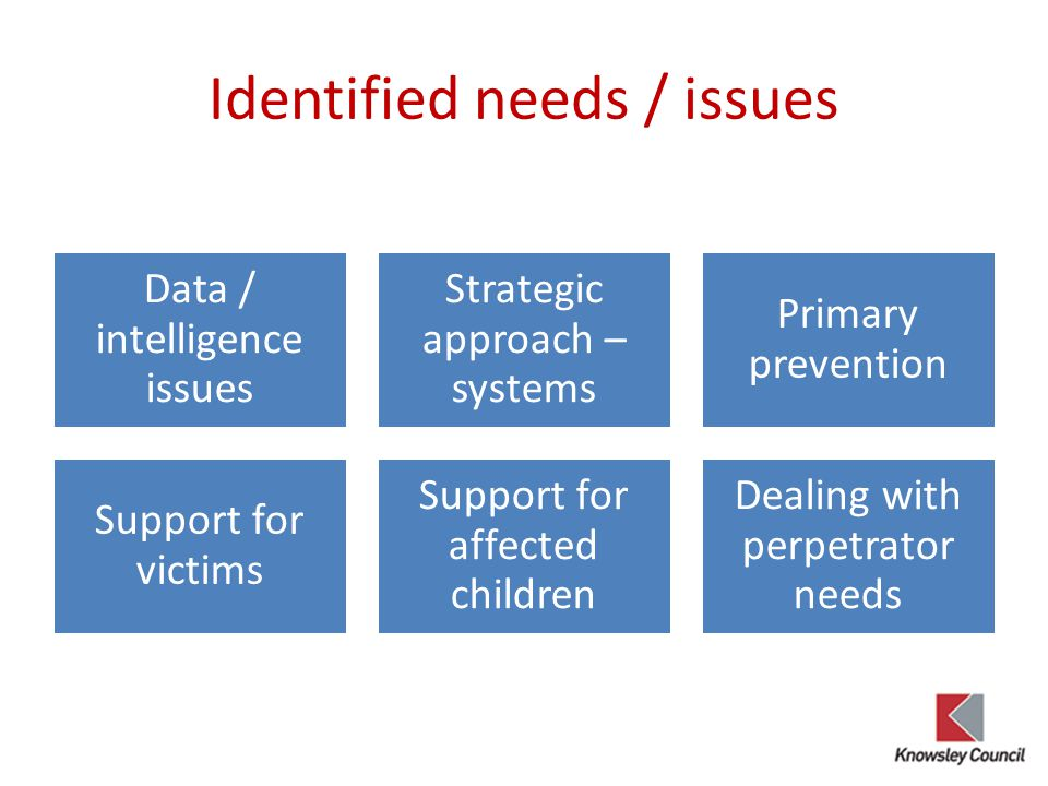 Identified needs / issues Data / intelligence issues Strategic approach – systems Primary prevention Support for victims Support for affected children