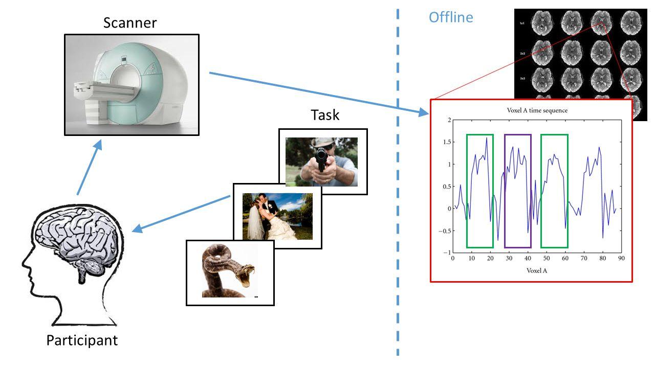 Participant Scanner Task Offline