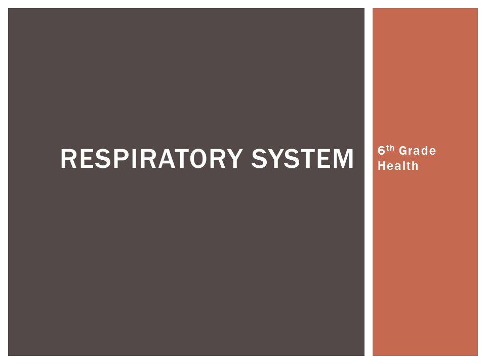 6 th Grade Health RESPIRATORY SYSTEM