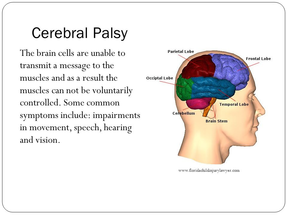Cerebral Palsy The brain cells are unable to transmit a message to the muscles and as a result the muscles can not be voluntarily controlled.