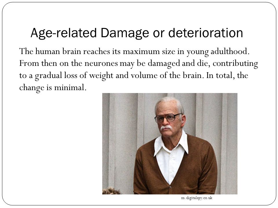Age-related Damage or deterioration The human brain reaches its maximum size in young adulthood.
