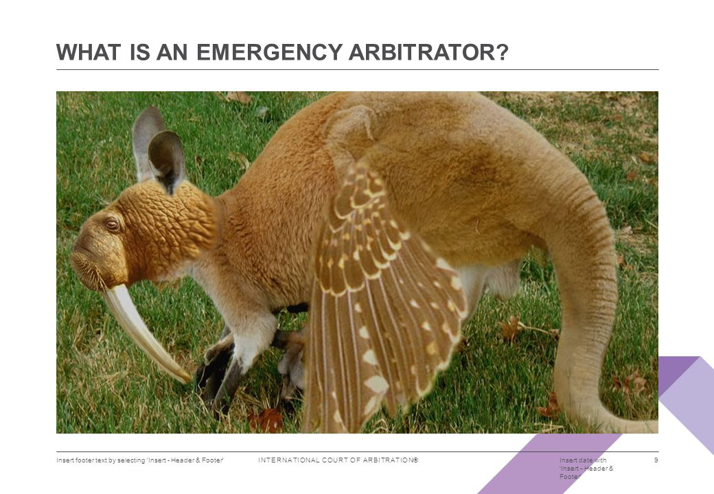 INTERNATIONAL COURT OF ARBITRATION® WHAT IS AN EMERGENCY ARBITRATOR.