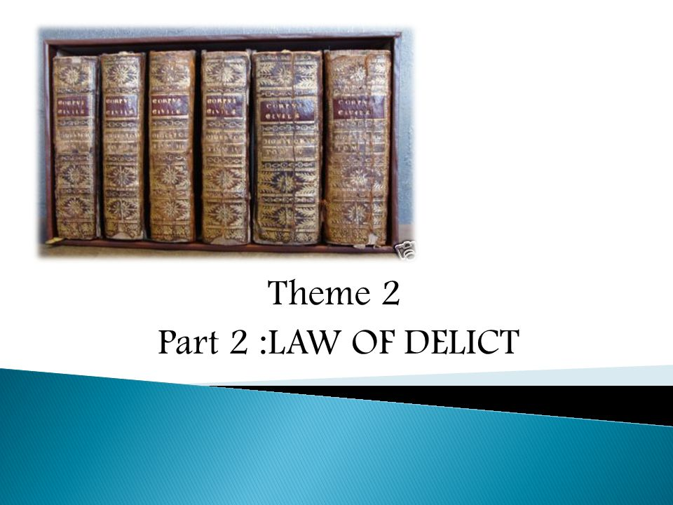 Theme 2 Part 2 :LAW OF DELICT