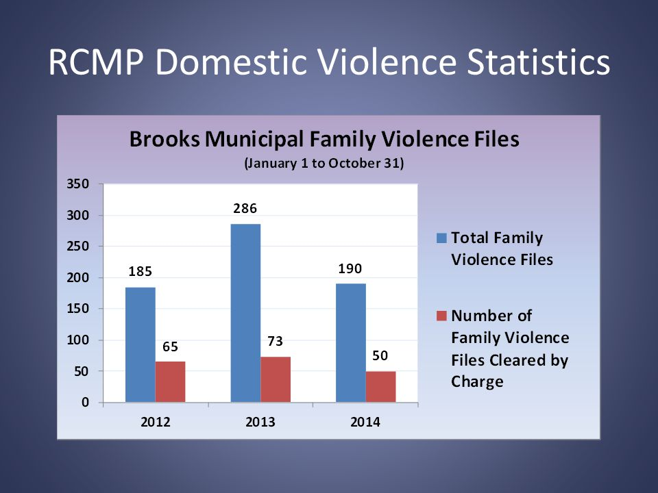 DVIT As A Whole What we all do: – RCMP – Victim Services – Women's Shelter – Outreach Services