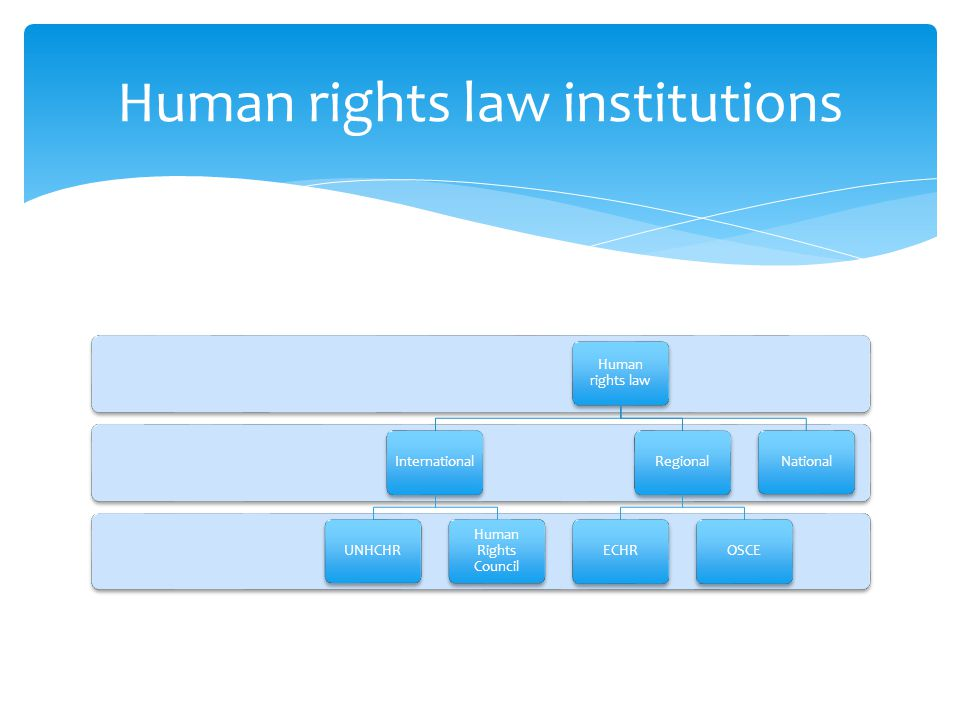 Human rights law InternationalUNHCHR Human Rights Council RegionalECHROSCENational Human rights law institutions