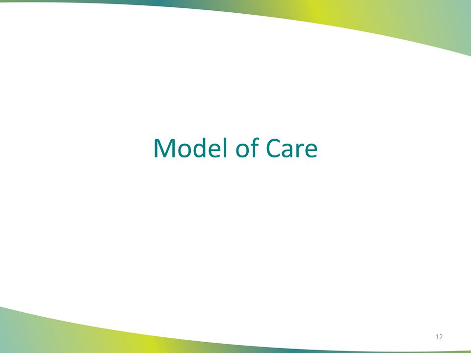 Model of Care 12