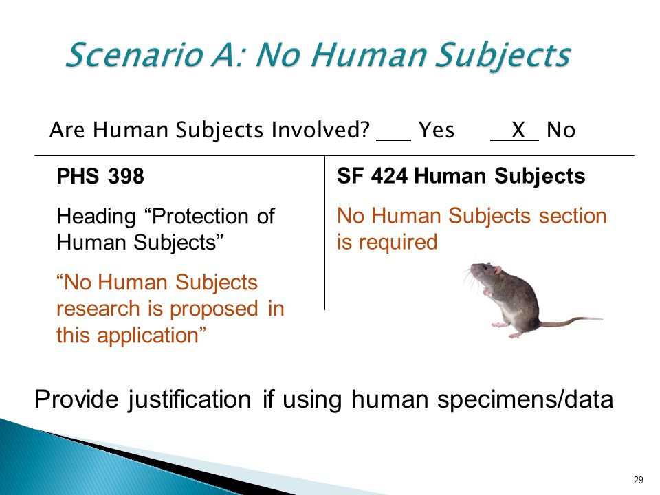 29 Scenario A: No Human Subjects Are Human Subjects Involved.