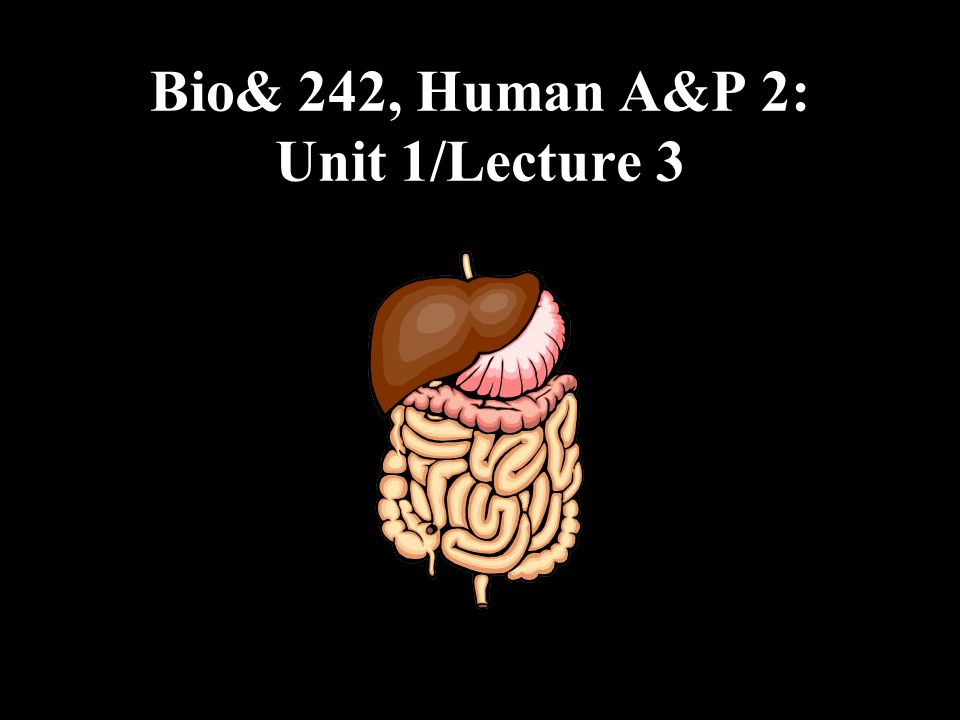 Anatomy of the Large Intestine The large intestine (colon) extends from the ileocecal sphincter to the anus.