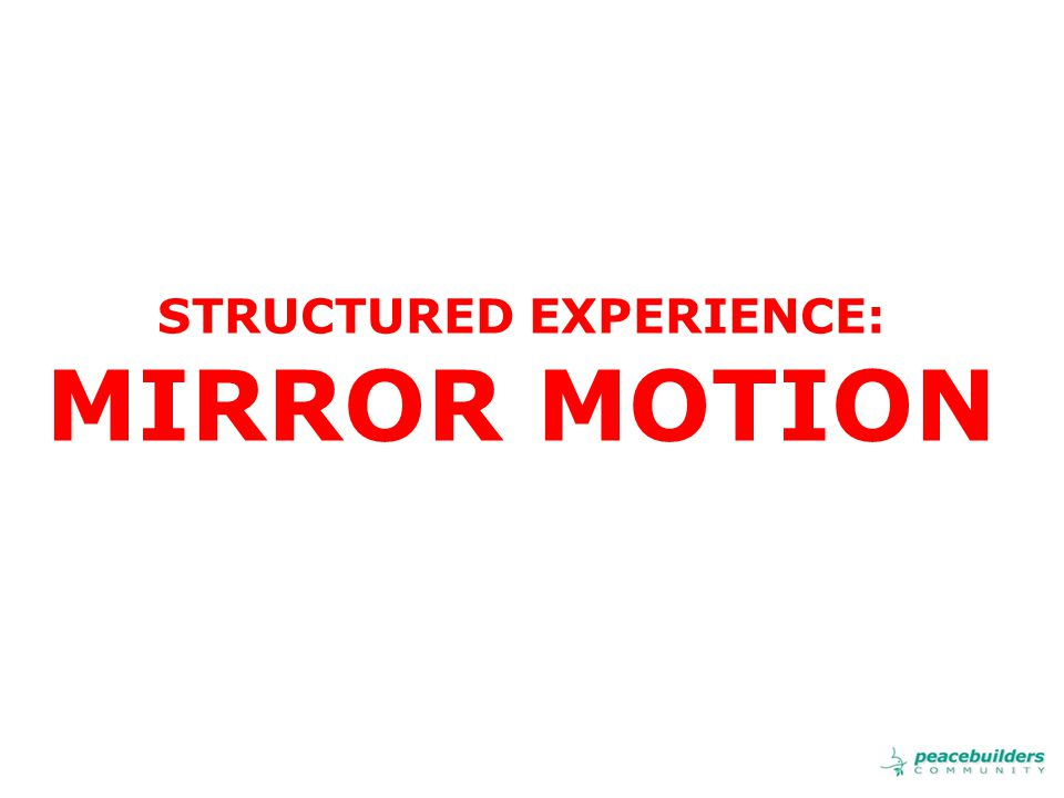STRUCTURED EXPERIENCE: MIRROR MOTION