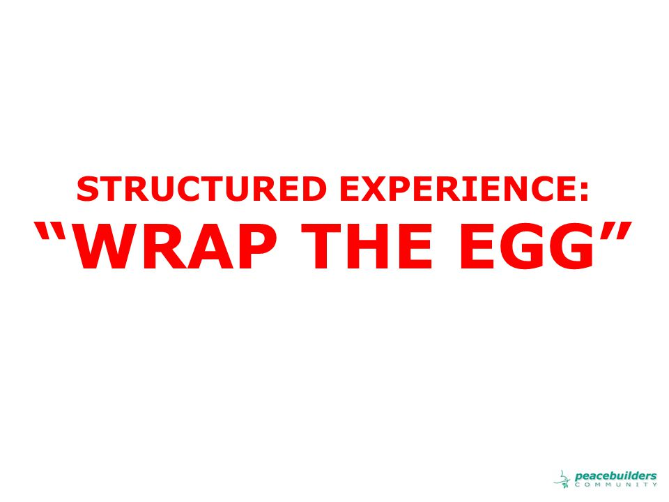STRUCTURED EXPERIENCE: WRAP THE EGG