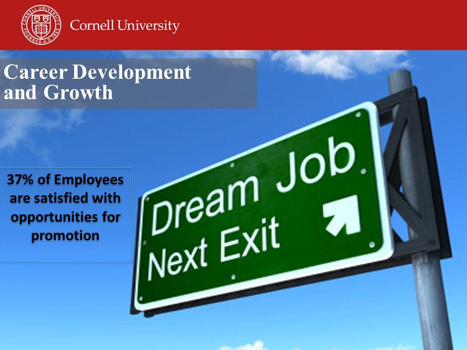 Survey Background: http://www.cornell.edu/employeesurvey/ http://www.cornell.edu/employeesurvey/ Ongoing Response: https://hr.cornell.edu/about/employeesurvey/ https://hr.cornell.edu/about/employeesurvey/ Additional Resources