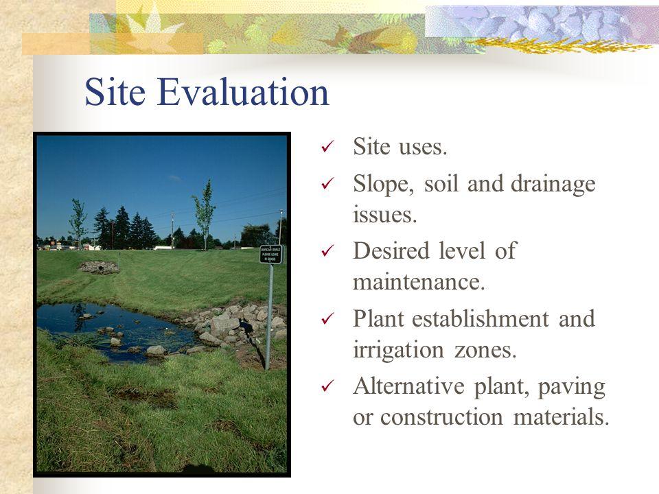 Site Evaluation Site uses. Slope, soil and drainage issues.