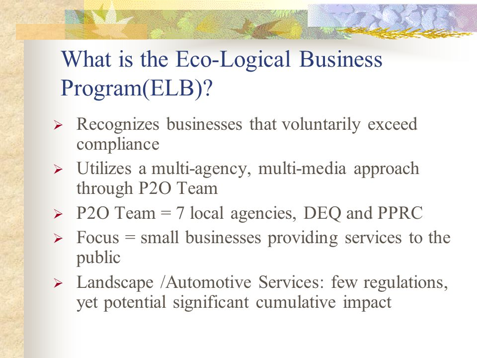 What is the Eco-Logical Business Program(ELB).