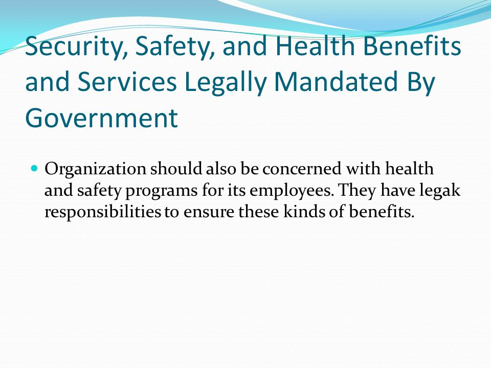 Security, Safety, and Health Benefits and Services Legally Mandated By Government Organization should also be concerned with health and safety program