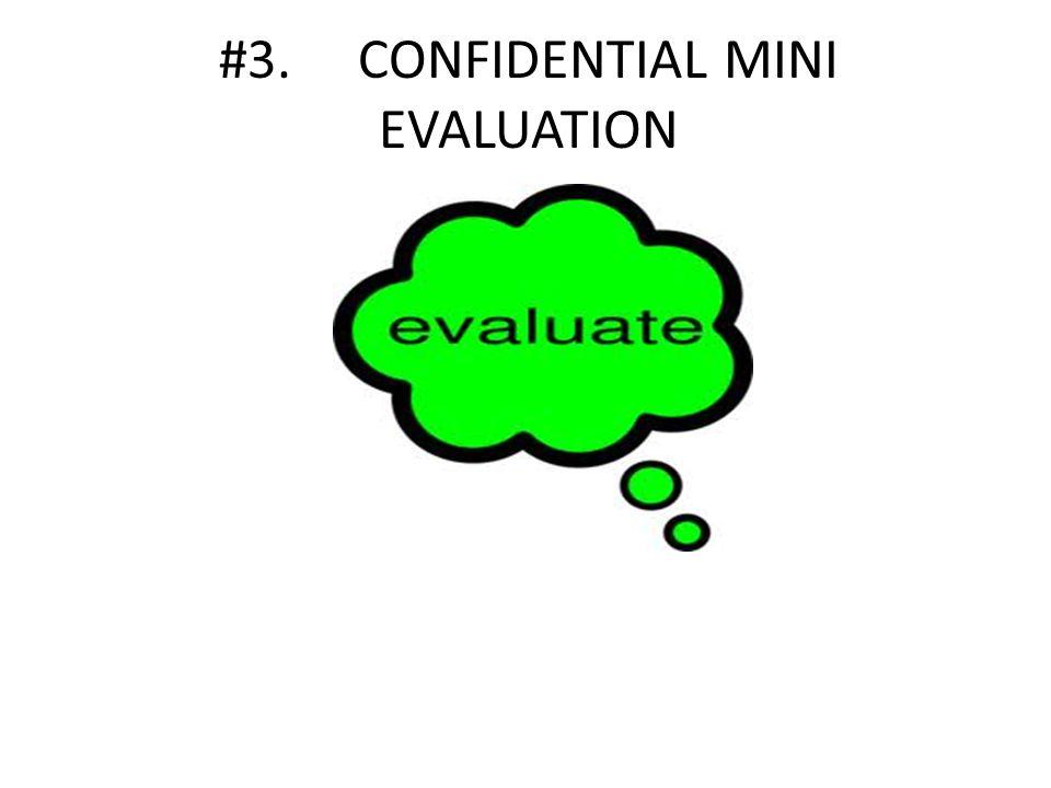 #3. CONFIDENTIAL MINI EVALUATION