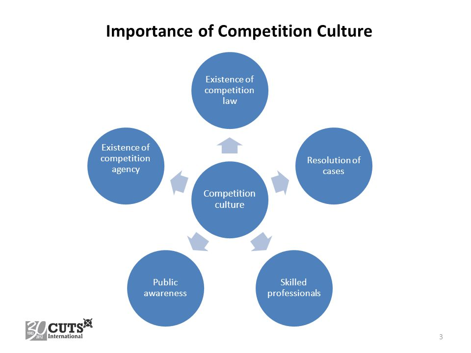 Competition culture Existence of competition law Resolution of cases Skilled professionals Public awareness Existence of competition agency 3 Importance of Competition Culture
