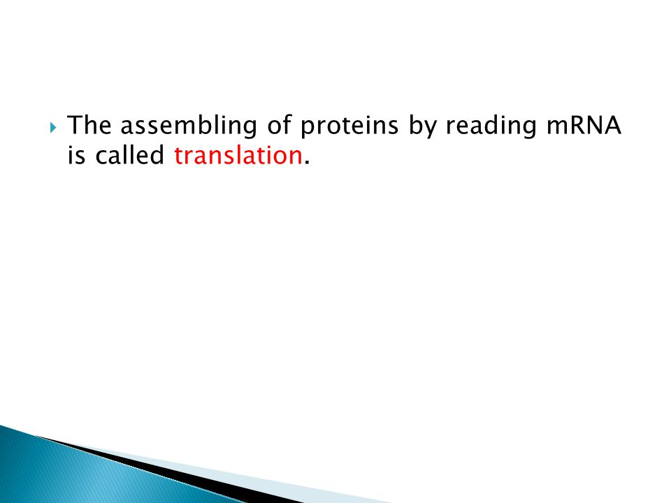  The assembling of proteins by reading mRNA is called translation.