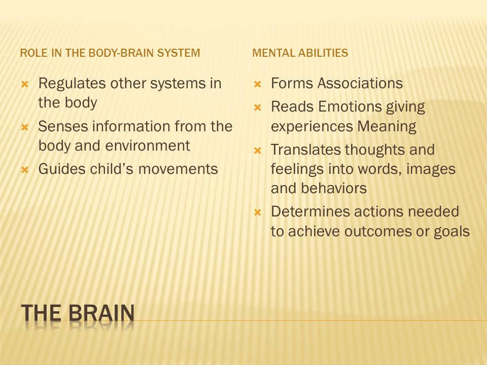  Regulates other systems in the body  Senses information from the body and environment  Guides child's movements  Forms Associations  Reads Emotions giving experiences Meaning  Translates thoughts and feelings into words, images and behaviors  Determines actions needed to achieve outcomes or goals ROLE IN THE BODY-BRAIN SYSTEMMENTAL ABILITIES