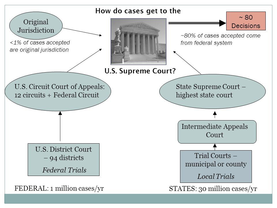 U.S. District Court – 94 districts Federal Trials FEDERAL: 1 million cases/yr STATES: 30 million cases/yr Trial Courts – municipal or county Local Tri