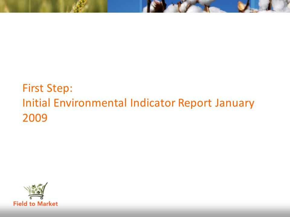 First Step: Initial Environmental Indicator Report January 2009