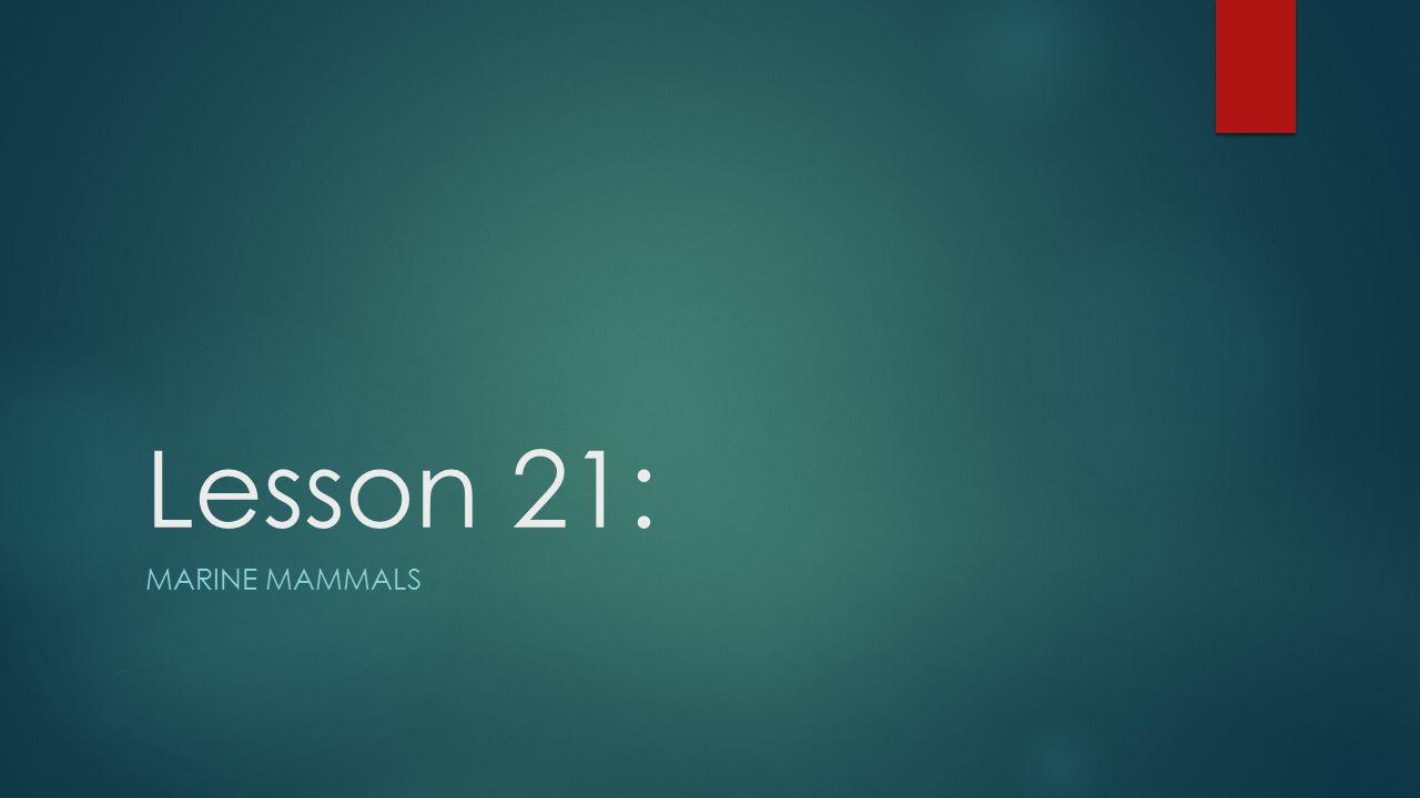 Lesson 21: MARINE MAMMALS