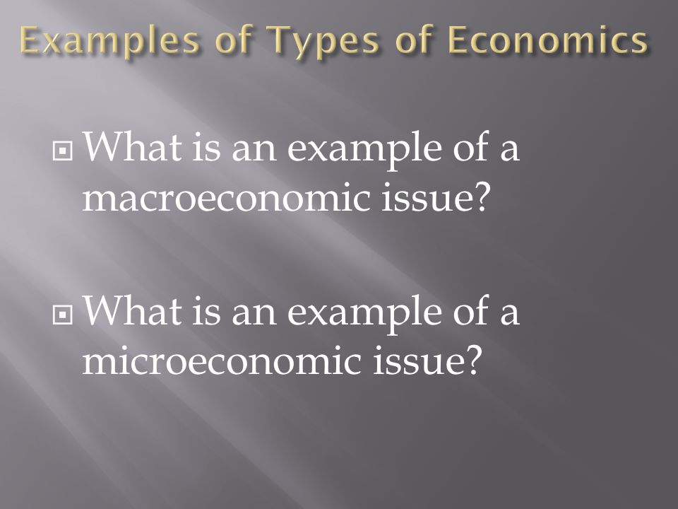  What is an example of a macroeconomic issue?  What is an example of a microeconomic issue?
