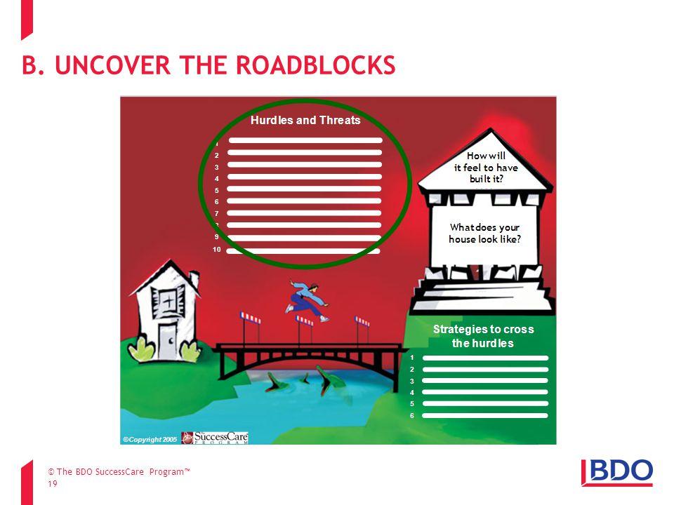 19 B. UNCOVER THE ROADBLOCKS © The BDO SuccessCare Program™