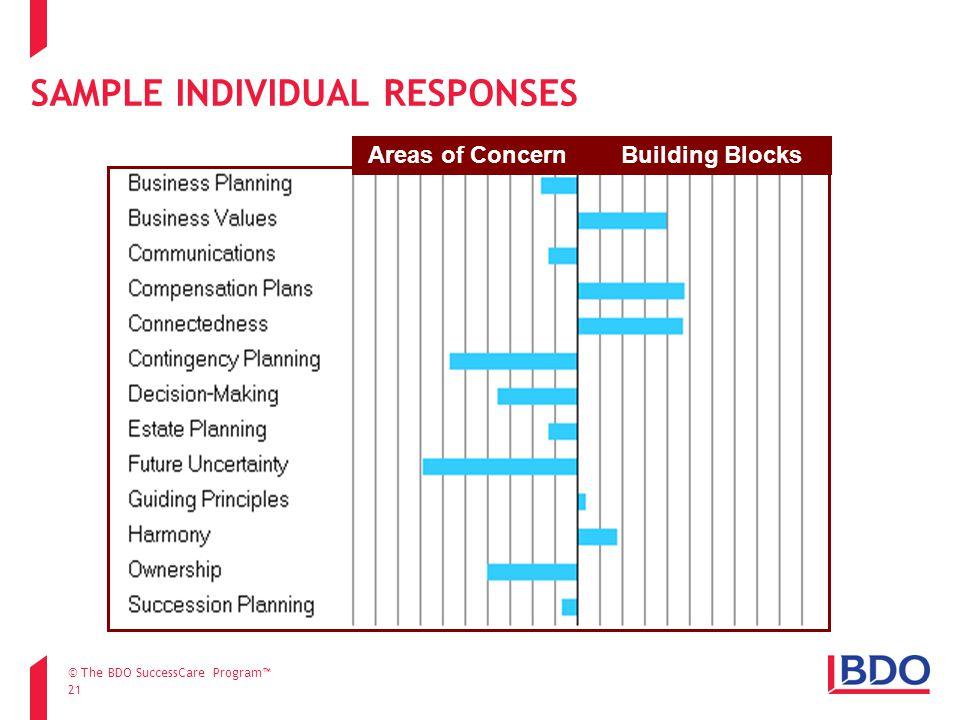 SAMPLE INDIVIDUAL RESPONSES 21 Areas of Concern Building Blocks © The BDO SuccessCare Program™