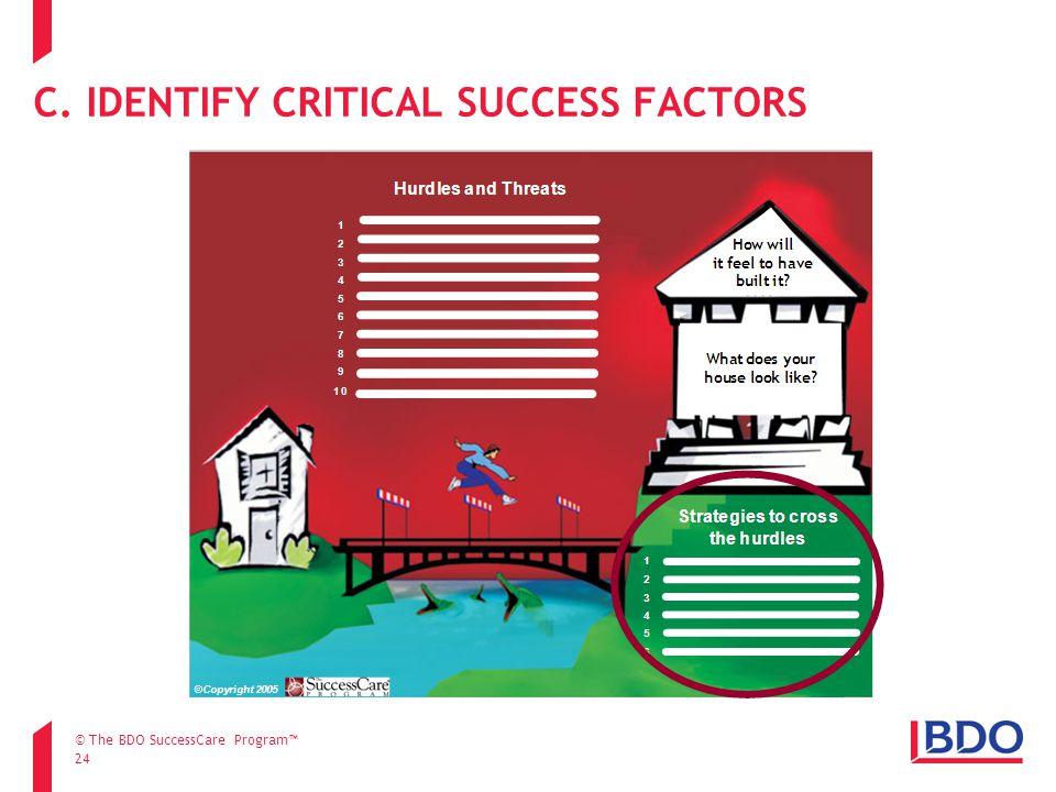 24 C. IDENTIFY CRITICAL SUCCESS FACTORS © The BDO SuccessCare Program™