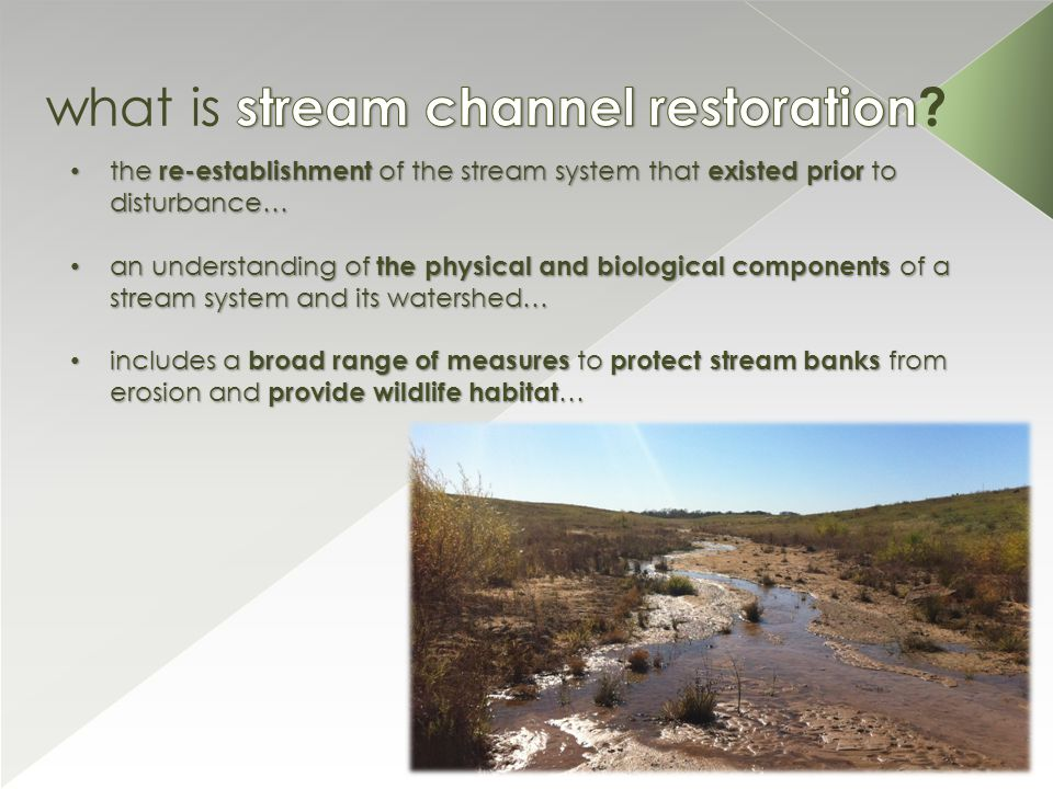 the re-establishment of the stream system that existed prior to disturbance… the re-establishment of the stream system that existed prior to disturbance… an understanding of the physical and biological components of a stream system and its watershed… an understanding of the physical and biological components of a stream system and its watershed… includes a broad range of measures to protect stream banks from erosion and provide wildlife habitat … includes a broad range of measures to protect stream banks from erosion and provide wildlife habitat …