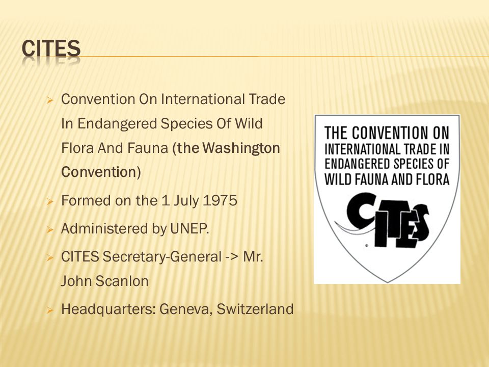  Convention On International Trade In Endangered Species Of Wild Flora And Fauna (the Washington Convention)  Formed on the 1 July 1975  Administer