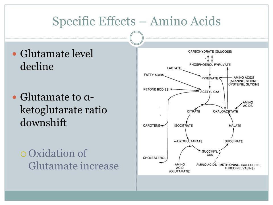Glutamate level decline Glutamate to α- ketoglutarate ratio downshift  Oxidation of Glutamate increase Specific Effects – Amino Acids