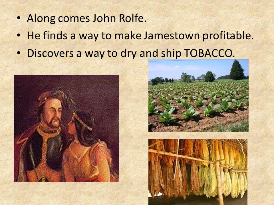 Along comes John Rolfe. He finds a way to make Jamestown profitable.