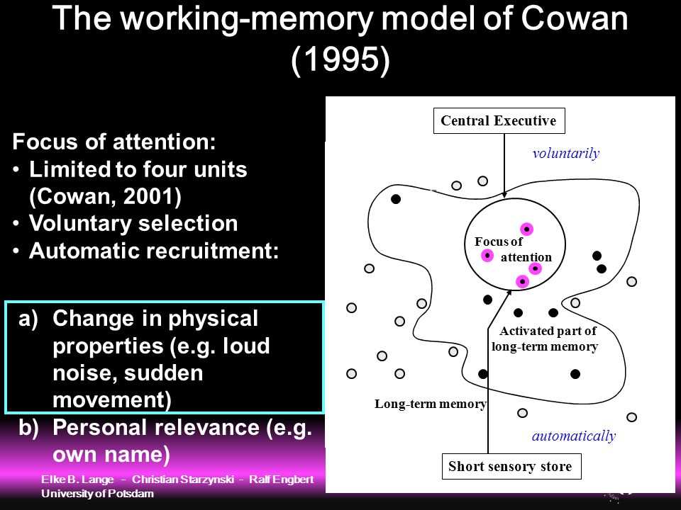 Long-term memory Activated part of long-term memory Focus of attention Central Executive voluntarily Focus of attention: Limited to four units (Cowan,