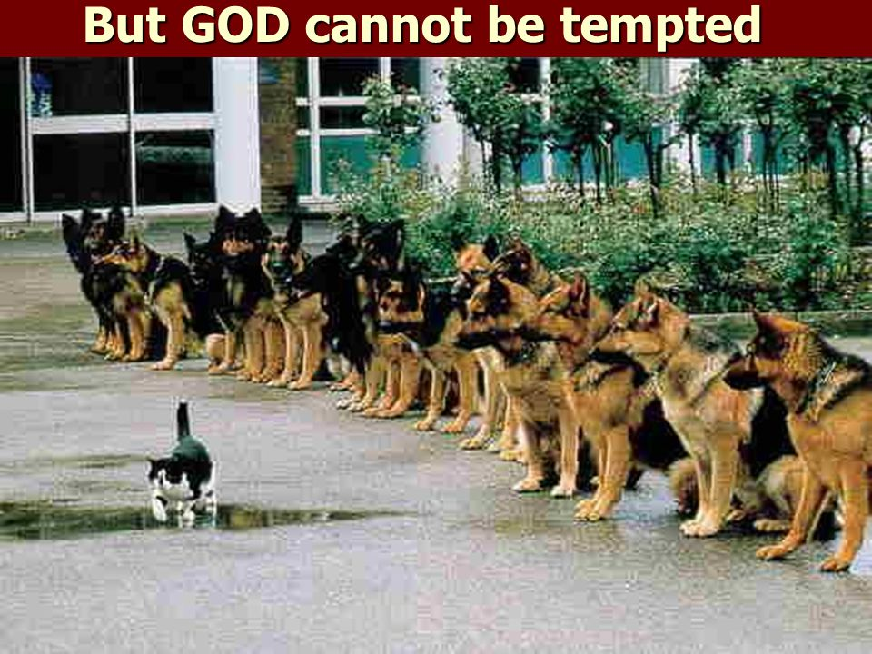 But GOD cannot be tempted by EVIL IMPOSSIBLE!!! Or we would NEVER have existed so long!