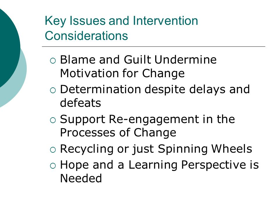 Key Issues and Intervention Considerations  Blame and Guilt Undermine Motivation for Change  Determination despite delays and defeats  Support Re-e