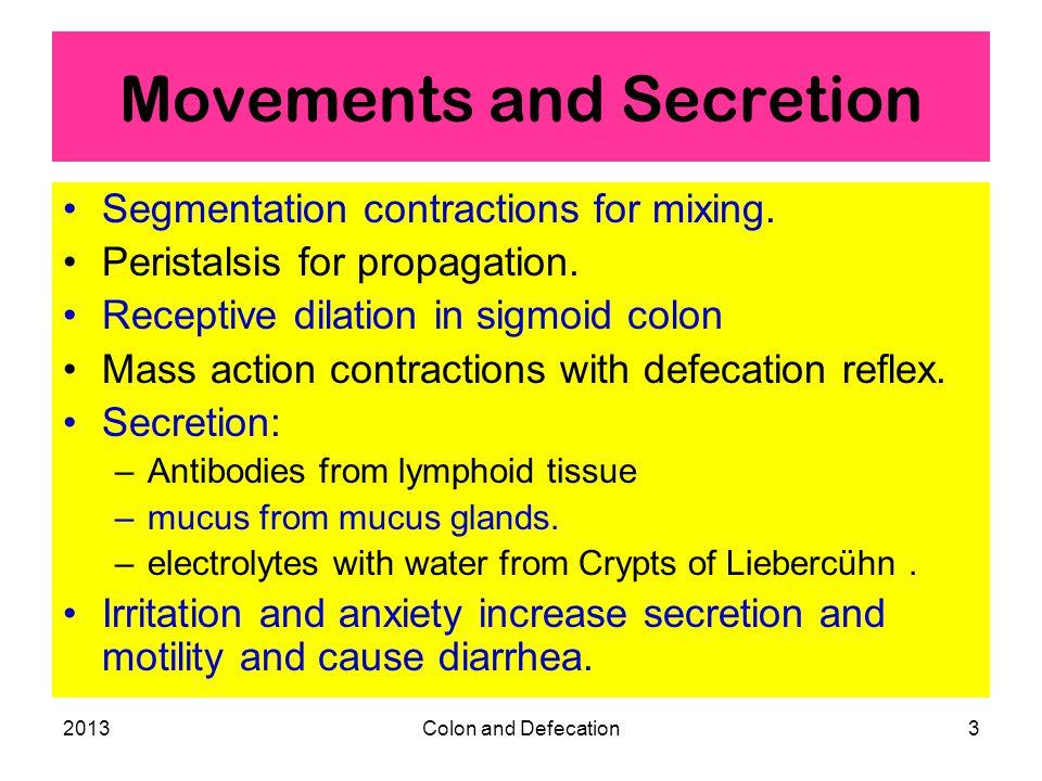 2013Colon and Defecation4 Bacteria in Colon Bacilli (E.