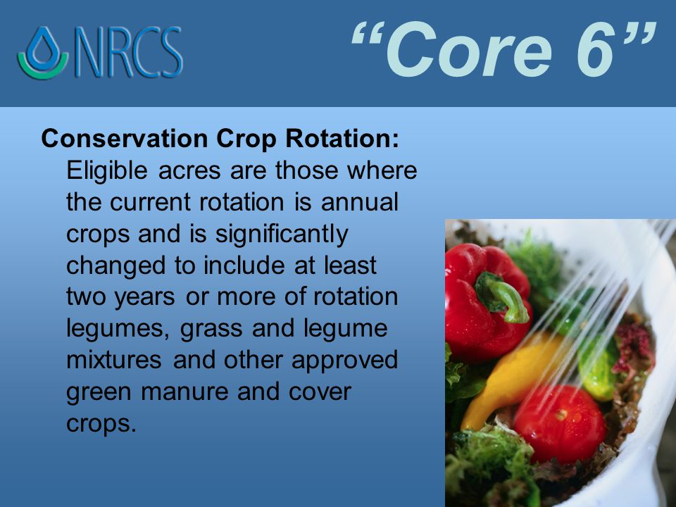Core 6 Conservation Crop Rotation: Eligible acres are those where the current rotation is annual crops and is significantly changed to include at least two years or more of rotation legumes, grass and legume mixtures and other approved green manure and cover crops.