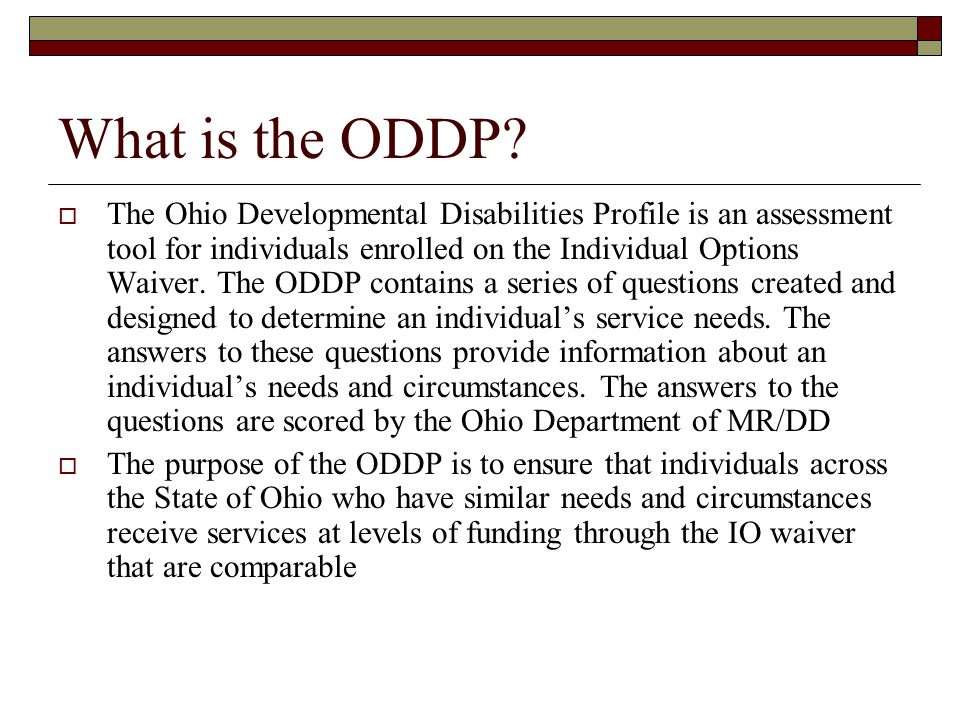 What is the ODDP.