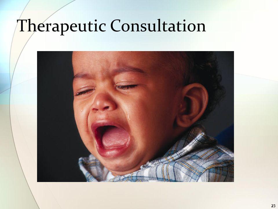 23 Therapeutic Consultation