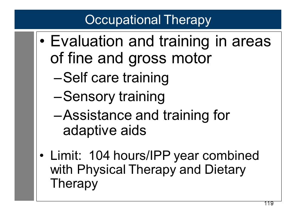 119 Occupational Therapy Evaluation and training in areas of fine and gross motor –Self care training –Sensory training –Assistance and training for adaptive aids Limit: 104 hours/IPP year combined with Physical Therapy and Dietary Therapy