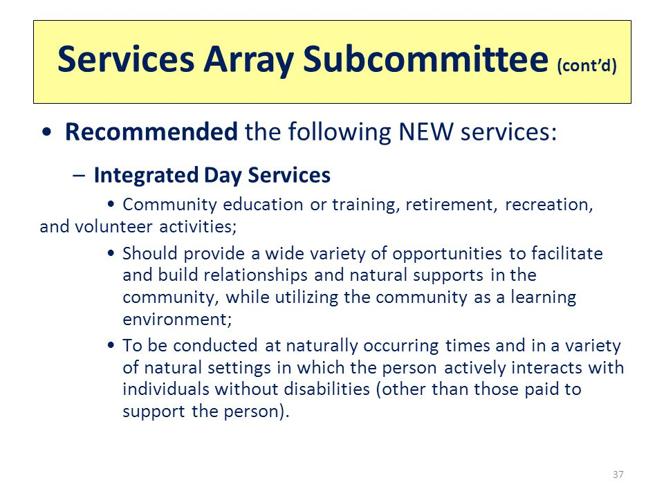 Services Array Subcommittee (cont'd) 37 Recommended the following NEW services: –Integrated Day Services Community education or training, retirement, recreation, and volunteer activities; Should provide a wide variety of opportunities to facilitate and build relationships and natural supports in the community, while utilizing the community as a learning environment; To be conducted at naturally occurring times and in a variety of natural settings in which the person actively interacts with individuals without disabilities (other than those paid to support the person).
