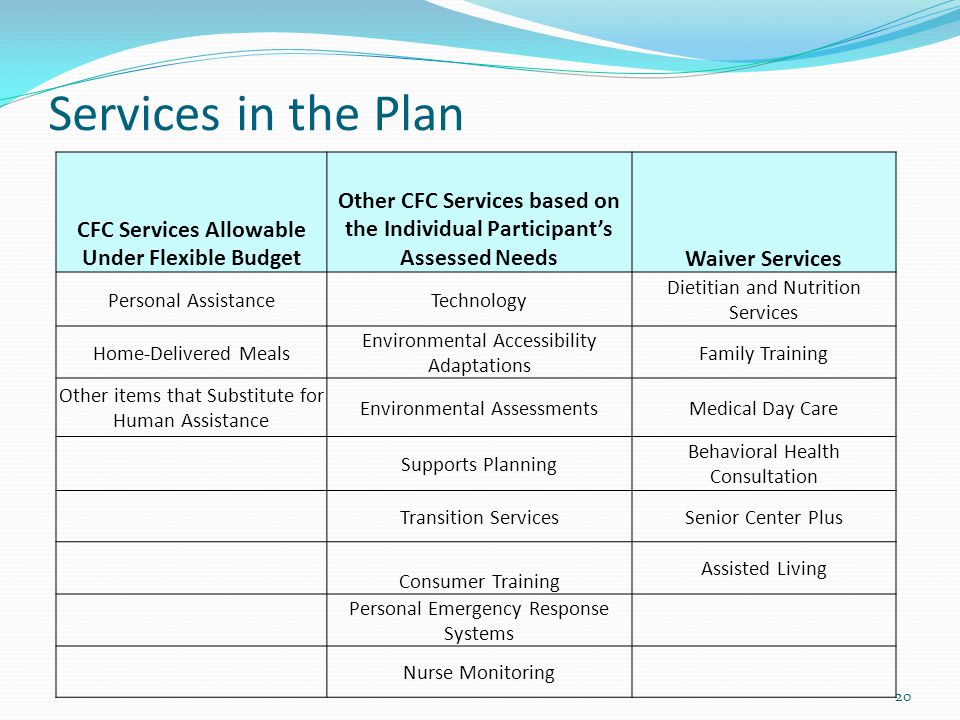 Services in the Plan 20 CFC Services Allowable Under Flexible Budget Other CFC Services based on the Individual Participant's Assessed NeedsWaiver Ser