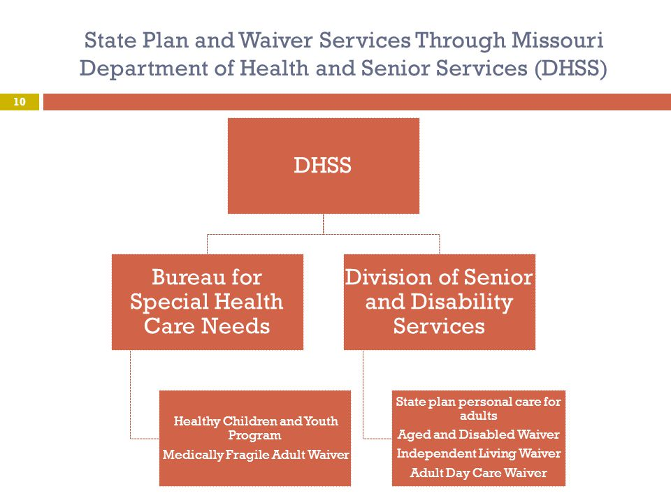 State Plan and Waiver Services Through Missouri Department of Health and Senior Services (DHSS) 10 DHSS Bureau for Special Health Care Needs Healthy C