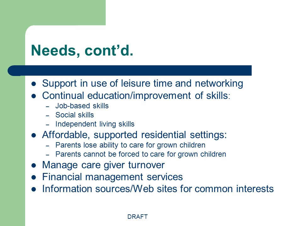 DRAFT Needs, cont'd. Support in use of leisure time and networking Continual education/improvement of skills : – Job-based skills – Social skills – In