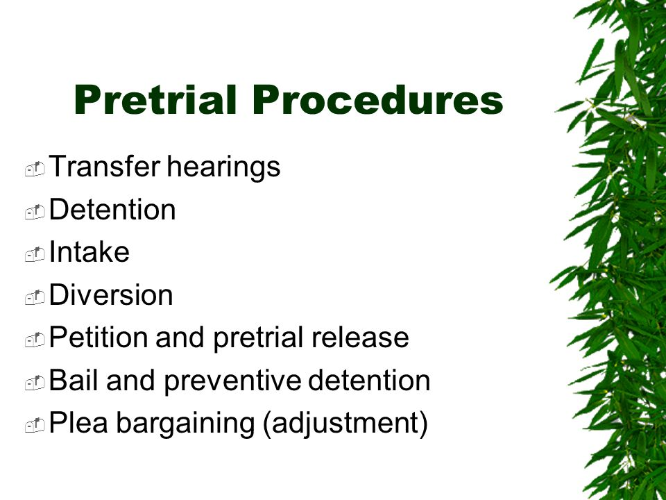 Pretrial Procedures  Transfer hearings  Detention  Intake  Diversion  Petition and pretrial release  Bail and preventive detention  Plea bargaining (adjustment)