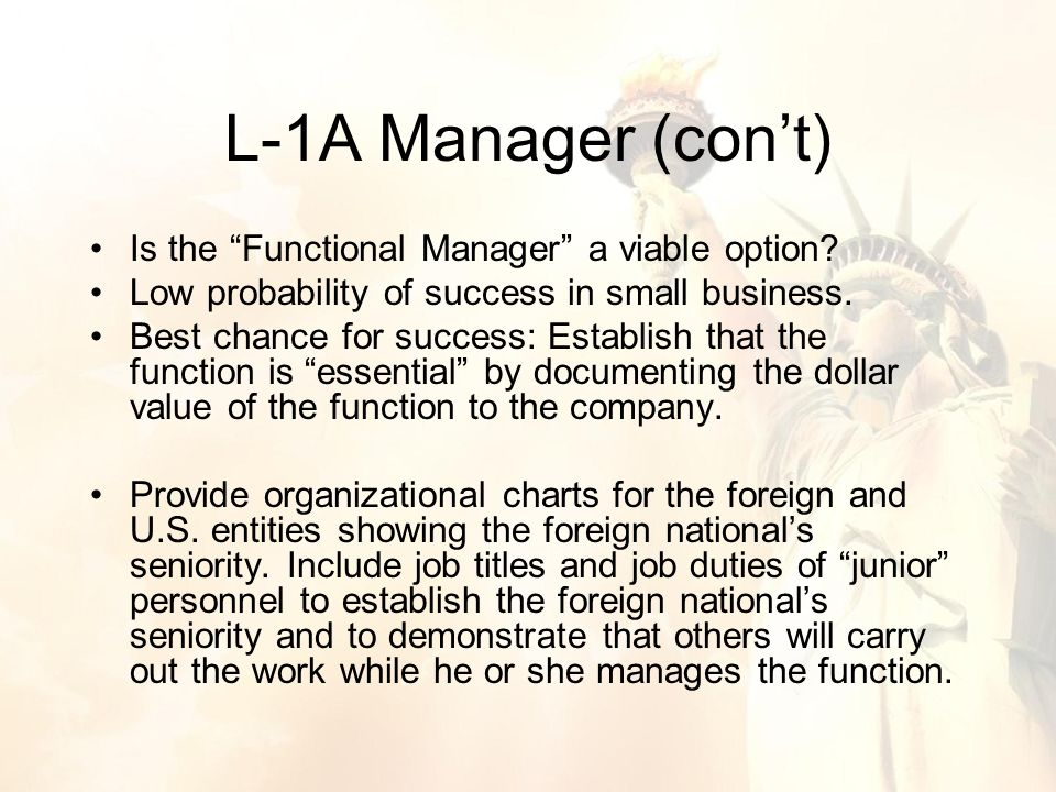 Is the Functional Manager a viable option. Low probability of success in small business.